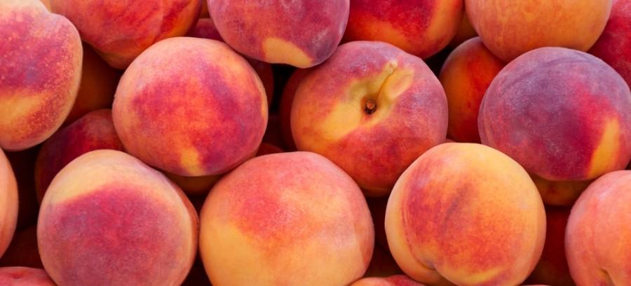 Fris met fruit van het seizoen